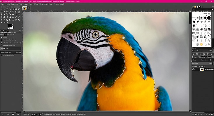 La Alternativa Gratuita a Photoshop 14