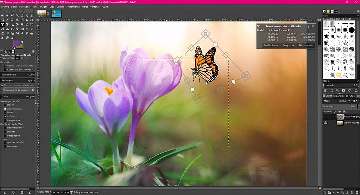 La Alternativa Gratuita a Photoshop 81