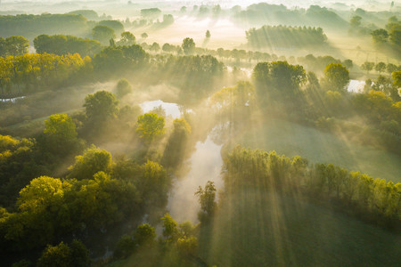 Highly Commended Bart Heirweg Dji