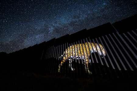 Npoty Photo Contest 2020 Another Barred Migrant Alejandro Prieto Winner C13 Portfolio